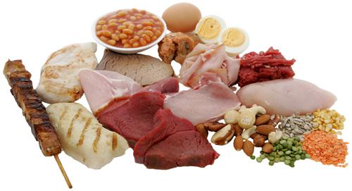 grøntsager med højt proteinindhold